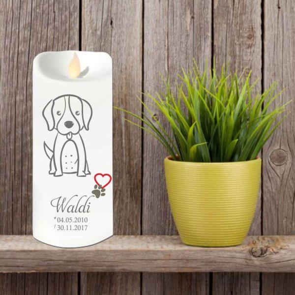 LED Kerze Twinkle für Tiere Hund Silhouette