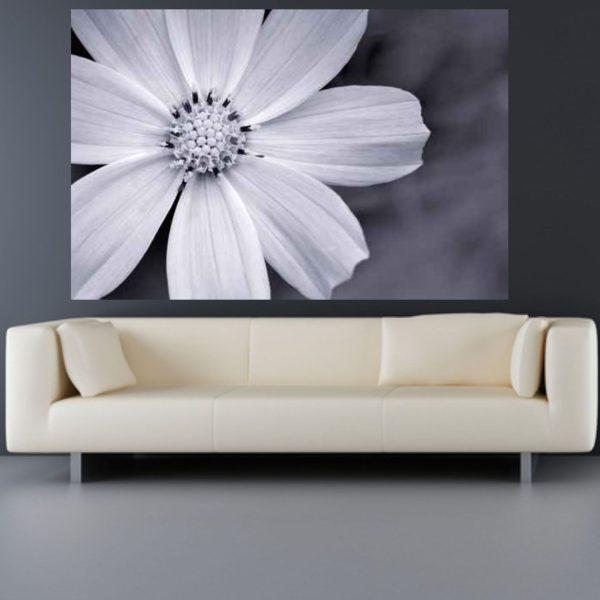 Wandtattoo Blumenbild schwarz-weiß