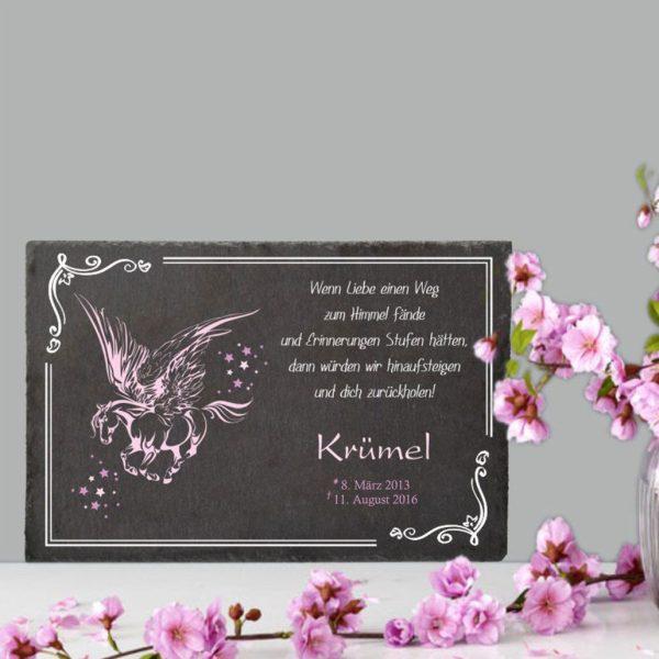 Gedenktafel Sternenkind Pegasus