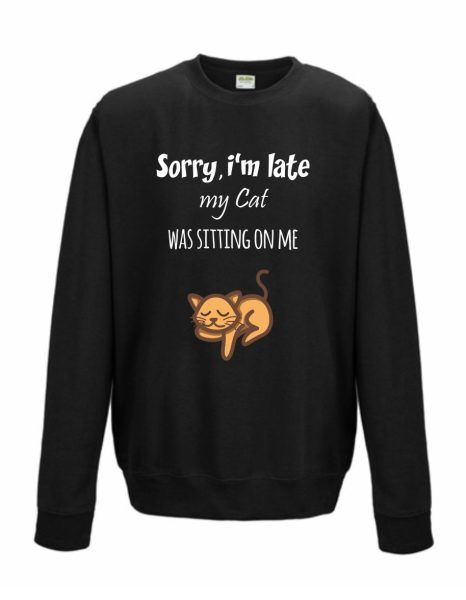 Sweatshirt Shirt Pullover Pulli Unisex Sorry I'm late my Cat was sitting on me