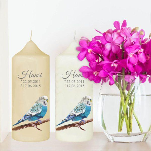 Wachskerze für Tiere Blauer Vogel